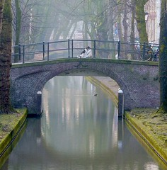 Waiting ... (Harry Mijland) Tags: dog holland netherlands dutch canal bravo waiting utrecht nederland thenetherlands hond explore nl gracht nieuwegracht dearharry harrymijland