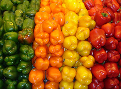 Assault On Peppers (oybay) Tags: color colors vegetables peppers redpepper greenpeppers fredmeyer yellowpeppers orangepeppers notpicked mireasrealm lovephotography