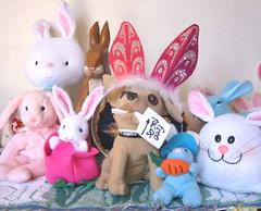 Taco's First Nightmare (Doxieone) Tags: dog bunny heidi ears dachshund taco rabbits easterset