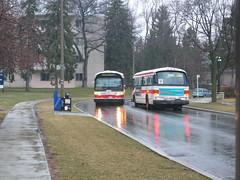 IMG_0170 (djp3000) Tags: toronto bus ttc rain northyork transit publictransport 78standrews publictransit