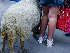 sheep (ponyintheair) Tags: street uk london english sheep legs bricklane mutton englishlegs