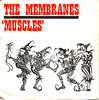 membranes | muscles