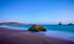 California Coast (luqmac) Tags: beach californiacoast hwy1 jennercalifornia nikond300 pacificcoast russianriverstatemarinereserveandrussianriverstatemarin californiastateroute116 goatrockbeach