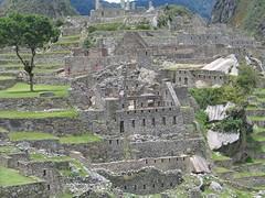 Machu Picchu; panorama 14