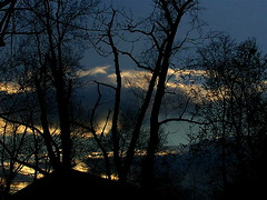 Sunset In Lexington II (mightyquinninwky) Tags: fontaineroad lexingtonky fayettecountyky kentucky clouds sunset trees december winter sky