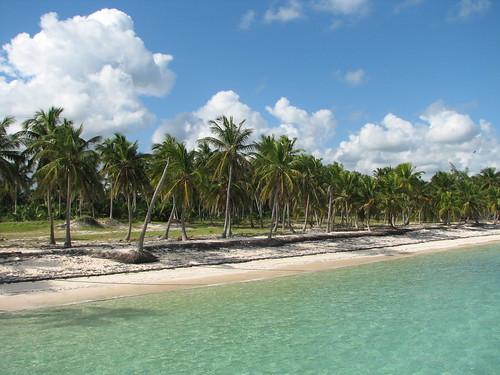 Vista de una hermosa playa en Punta Cana