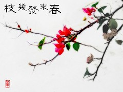 cp005 (barrysee) Tags: new red plant flower green painting leaf singapore year chinese newyear caligraphy oneyear chinesepainting beesee