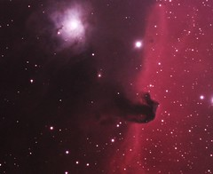 Horsehead nebula (-mrh) Tags: nebula astrophotography orion ic434 horsehead b33 st2000xme stf7 ngc2023