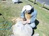 fil day 9 05_resize (te_kupenga) Tags: clip day10 kupenga filipetohi gen06
