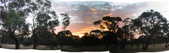 ocean grove bush pana (thomask) Tags: sunset beach bush australia victoria oceangrove