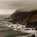 Foggy cliffs, Point Reyes, February 1993