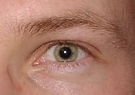Steffen_196_1 (Thoralf Schade) Tags: eye eyes augen auge