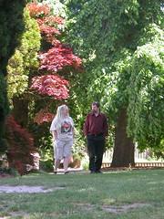 A short stroll (sbisson) Tags: honeymoon christchurch monavale newzealand