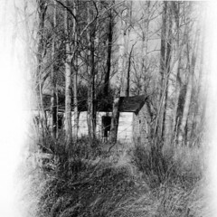 Old House in the Woods (Sherlock77 (James)) Tags: bw house abandoned cabin alberta olympustrip35 christmasday2005