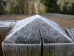 Fence post with frost (Drift Words) Tags: fence frost pyramid grain crack mundanedetail