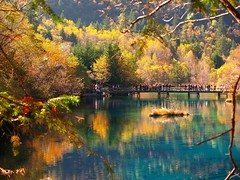 Fall comes to Jiuzhaigou (Sam's Exotic Travels) Tags: china bridge lake fall water colors wow mirror sam gutentag jiuzhaigou guten sams travelphotos samsays samsexotictravelphotos exotictravelphotos samsayscom
