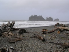 Olympic Peninsula (Jan 05) 193 (Ayric Andy) Tags: beach coast waves washingtoncoast olympicmountains crescentlake lapushwa
