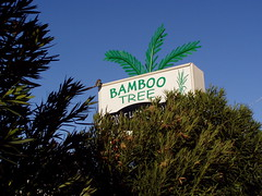 20060207 Bamboo Tree Mobile Home Park