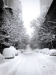 East 84th Street, Blizzard Lane, NYC (PHUDE-nyc) Tags: street nyc newyorkcity trees winter blackandwhite bw white snow cold cars buildings frost top20winter manhattan covered blizzard 84th facebook east84thstreet blogjam kacjournal