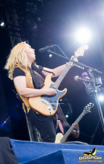 Melissa_Etheridge-7