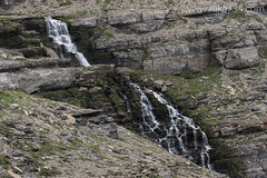 """Waterfall below Piegan Pass • <a style=""""font-size:0.8em;"""" href=""""http://www.flickr.com/photos/63501323@N07/19528550294/"""" target=""""_blank"""">View on Flickr</a>"""