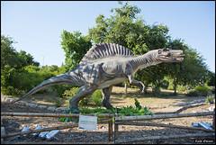 Spinosaurus 8703 (Zachi Evenor) Tags: israel dinosaur jerusalem botanicgarden  botanicalgarden  dinosaurs animatronics 2015 jerusale dinosauria givatram spinosaurus    zachievenor
