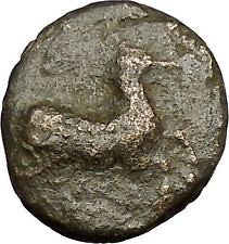Philip II Alexander the Great Dad OLYMPIC GAMES Ancient Greek Coin Horse i51656 (iwaynedias) Tags: horse greek coin ancient dad great games ii olympic alexander philip uncategorized i51656 highratinglowprice