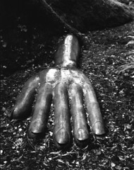 Sleeping Lady Hand (jackiewilde) Tags: victoria vancouverisland britishcolumbia beaconhillpark hand concrete sculpture sleepinglady bc pentax67 pentax6x7 agfa retro80s mediumformat