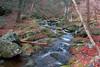 Hiking to Rapidan Camp (webmastermama71) Tags: waterfall stream creek forest woods rocks fallingwater hiking trails shenandoah