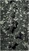 Leafline (Brendan Masterson) Tags: nikon nikon300mmf4 d7200 upton tree leaf bark