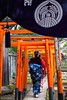 New Year 2017 #3 (Yorkey&Rin) Tags: 2017 em5 january japan kimono lady leicadgsummilux25f14 newyear nezushrine olympus rin shrine t1023632 tokyo winter お正月 根津神社 初詣 女性 着物姿 酉年