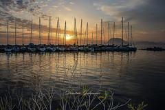Shadows games (Greece) (dimitris.giakoumis17) Tags: moorings dock sailingboats nikondslrcamera nikonlens nikond5200 nikon1855vrdxii greece patras eλλάδα πάτρα ηλιοβασίλεμα μαρἰνα dimitrisgiakoumisphotography