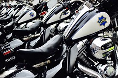 Get In Formation (Zee Jenkins) Tags: motorcycle sfpd cops bikes