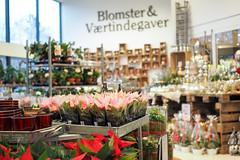 butik1 (flemming.ladefoged) Tags: frugt grønt vegetables flowers denmark