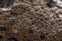 Macro - Basalte (Darth Jipsu) Tags: macro macrophotographie basalte olivine pierre magma magmatique volcan piton pitondelafournaise réunion île