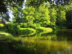 20150604_191905 (jlfaurie) Tags: france village francia printemps eglise étang lesmesnuls yvelines peublo jlfr
