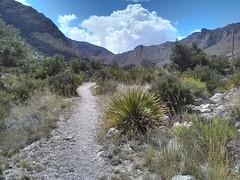 Guadalupe Mountains National Park Texas.  15 June 2015 (ov.black) Tags: park cloud mountain storm mountains clouds nationalpark texas tx lg trail smartphone guadalupemountainsnationalpark guadalupemountains approachingstorm stormcoming stormapproaching lgsmartphone lgoptimus lgms659
