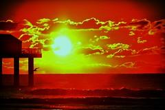 Morning sunshine (M.J.H. photography) Tags: morning sun pier am dock seagull gull atlanticcity