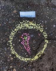 """1. July 2015: At the Allotment Ants Brooklet: Lotti: """"A watch?"""" Lottchen: """"Eine Uhr?"""" - """"an apple a day keeps the doctor away - An ENSO (Japanese: circle, kreis) a Day ..."""" (hedbavny) Tags: vienna wien pink green art clock yellow stone circle studio japanese austria mirror design sketch chalk leaf sterreich spiegel kunst diary watch pflanze rosa sketchbook gelb workshop fallen cycle kimono wabisabi grn calligraphy blatt stein sidewalkchalk tagebuch heute bunt beton aktion atelier boden uhr kreis privat enso workingroom werkstatt adalbertstifter sonnenuhr entwurf kreide umris skizze sewingpattern metapher japanisch arbeitsraum steinplatte kalligraphie skizzenbuch project365 strassenkreide fermate maigrn schnittmuster aktionismus stifter zyklus berlegungen strassenmalkreide musterbogen hedbavny ingridhedbavny"""