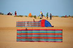 Beach colours (ellievking1) Tags: wellsnextthesea wells norfolk england uk eastanglia holkham beach windbreak beachumbrella