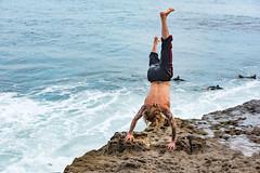 ArchitectGJA-9478.jpg (ArchitectGJA) Tags: lighthousepoint surfing californiababy wetsuit oneill jamessclar xcel lighthousefield california beach marineanimals coast cliffs streetphotography waves surfingsteamerlane santacruz steamerlane montereybay