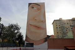 Novembre_1016 (Joanbrebo) Tags: verneda barcelona canoneos80d efs1018mmf4556isstm eosd autofocus pintadas murales murals grafitis streetart