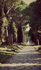 Via Appia Antica (shadow_in_the_water) Tags: viaappiaantica appianway cypresses italianstonepines umbrellapines romanroad rome italy pinuspinea parasolpine trees dusk