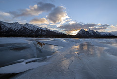 Dog days of winter (Len Langevin) Tags: alberta canada rockies rockymountains abrahamlake frozen ice dog mansbestfriend sunrise landscape winter nikon d300s tokina 1116 wow