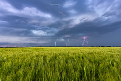 Thunder in the field (Sunrising Life) Tags: thunder field green clouds lighting blue sunset wind turbine landscape storm