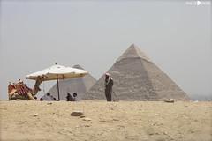 IMG_4300 (millie_difiore) Tags: deserto persone piramide sole ombrellone giza egitto arena desierto pirámides sol sombrilla egipto sand desert people pyramids sun egypt umbrella ruins rovine ruinas