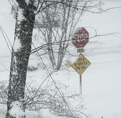 Signs In A Snowstorm; Long Island, New York (hogophotoNY) Tags: greatneck newyork unitedstates us snow storm snowstorm stormy winter weather usa ny nystate white road roads wind yellow red