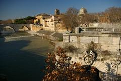 Rome 2010 938