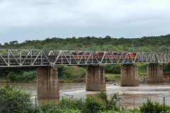 old train crossing the elephants river in south africa (compuinfoto) Tags: africa railroad travel bridge trees red summer horizontal pine rural forest train wagon southafrica high track crossing cross diesel scenic overpass railway structure viaduct massive transportation transit infrastructure huge summertime tall pillars thoroughfare elephantriver