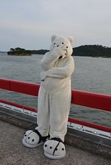 Tender Paws in Japan by Sean C (Tender Paws UK) Tags: bear japan polarbear paws polar tender  fursuit shirokuma fursuiting tenderpaws